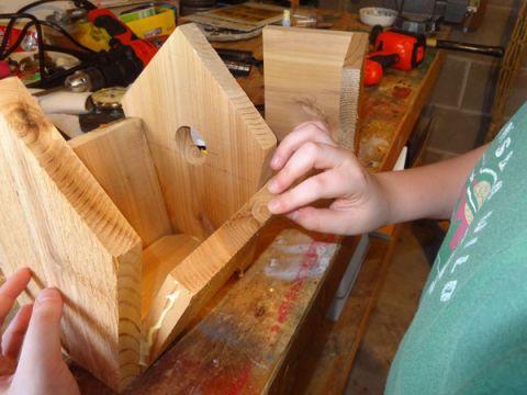 Making a Birdhouse