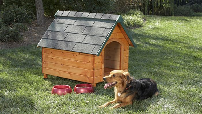 plywood pet house